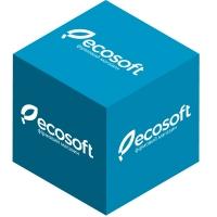 Ecosoft Компонент Б REMINP2B