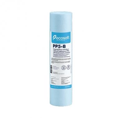 "Ecosoft 2,5""х10"" бактериостатический"